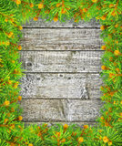 Gräsplanfilialer av granen på träbakgrunden. Royaltyfri Foto