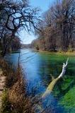 Gräsplanfrikändvatten, Frio flod, Texas Arkivbilder