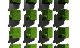 Gräsplanhus Arkivfoton