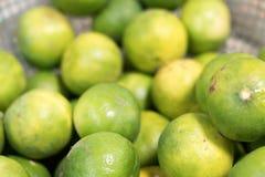 Gräsplanlimefrukterna Arkivfoton