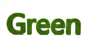 GRÄSPLANord för tolkning som 3D göras av grönt gräs royaltyfri illustrationer