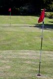 gräsplanpitchputt två Arkivbild