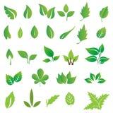 Gräsplansidor vektor illustrationer