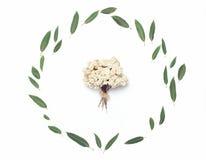 Gräsplansidor och dekorativ liten bukett av torkade blommor Royaltyfri Foto