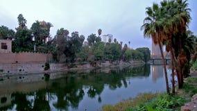 Gräsplanträdgårdar av Kairo, Egypten arkivfilmer