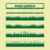 Gräsprövkopior som är olika Arkivbilder