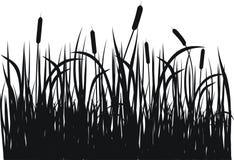 grässilhouettevektor Arkivfoto