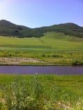 Grässlätt Inner Mongolia Fotografering för Bildbyråer