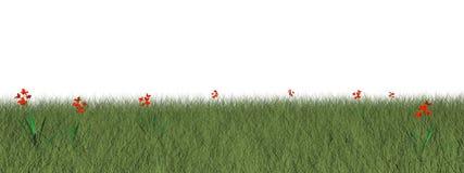 Grässlätt med blommor - 3D framför vektor illustrationer