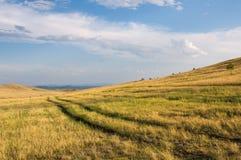 Grässlätt på Okhota i sommar arkivbilder