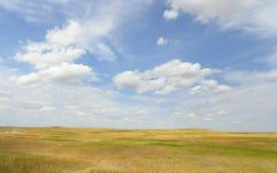 Grässlättar av Greatet Plains, South Dakota royaltyfri fotografi