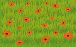 grässlättillustration Royaltyfri Bild