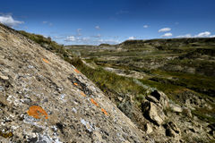 Grässlättnationalpark Arkivbilder