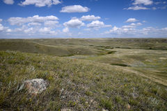 Grässlättnationalpark Arkivfoto