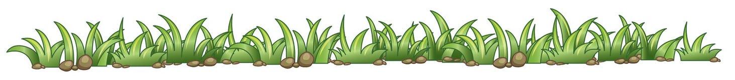 grästextur stock illustrationer