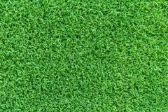 Grästexturbakgrund för golfbana, fotbollfält eller sportbegreppsdesign Konstgjort grönt gräs royaltyfria bilder