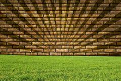 grästexturvägg Arkivfoton