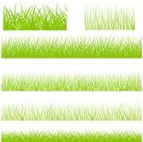 Gräsuppsättning utan kant för vektor Royaltyfri Fotografi