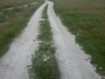 Gräsväg Arkivfoton