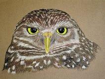gräva owlmålning royaltyfri illustrationer