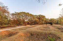 Grävde massgravar, Choeng Ek, förorter Phnom Penh, Cambodja Royaltyfri Fotografi