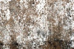 Grå betongvägg med att smula murbruk textural sammansättning arkivbild