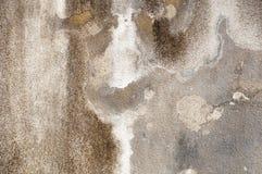 Grå betongvägg med att smula murbruk textural sammansättning royaltyfri foto