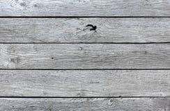Grå blå wood textur och bakgrund Royaltyfri Fotografi
