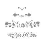 Grå blom- design Royaltyfri Fotografi