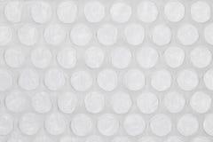 Grå bubblasjal Arkivbild