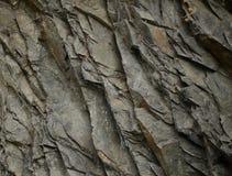 Grå färg vaggar texturerar Abstrakt bakgrund av stenen Arkivbilder