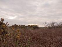 Grå färgen för skymning för lågvattensommarhimmel fördunklar lynne och reds med riv Fotografering för Bildbyråer