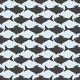 Grå färger fiskar mitt emot modell royaltyfri illustrationer