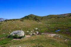 Grå färger stenar och den lilla blåa sjön i fjällängar för grönt gräs Arkivfoto