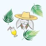 Grå hare i en sugrörhatt på en vit bakgrund med palmblad och en coctail vektor illustrationer