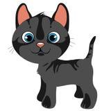 Grå katt för tecknad film med blåa ögon, vektorhusdjur vektor illustrationer