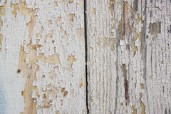 Grå och vit bakgrund av den red ut målade träplankan Royaltyfri Bild