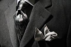 grå omslagstie Royaltyfri Bild
