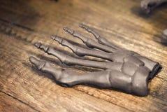 Grå prototyp av skelettet för mänsklig fot som skrivs ut på skrivaren 3d på mörk yttersida Arkivbilder