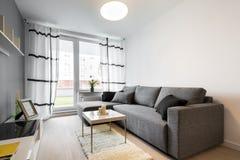 Grå soffa i modern vardagsrum royaltyfri fotografi