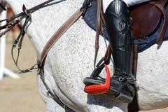 Grå sporthäst och ryttare på galopp Hästshowbanhoppning i detaljer royaltyfria foton