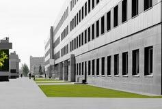 Grå stad och gröna gräsmattor Royaltyfri Foto