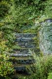 Grå stenstepd i en trädgård Arkivfoton