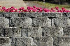 grå stenvägg royaltyfria foton