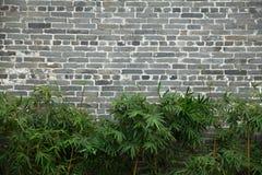 Grå tegelstenvägg royaltyfria foton