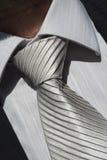 grå tie Royaltyfri Fotografi