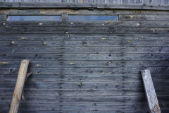 Grå träbakgrund royaltyfria bilder