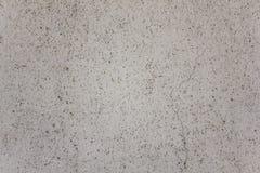 Grå vit grynig yttersida av väggen med svarta prickar och en stor spricka ungefärlig textur arkivbilder