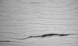 Grå wood tabell arkivbild