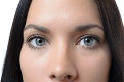Gråa ögon av en attraktiv ung kvinna arkivfoton